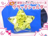 カフェレオ女子チャンネル【新着グッズレビュー】 星型コレクションシリーズ クラッチショルダー
